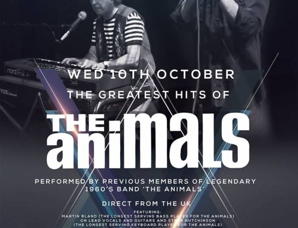The Animals at MIFF